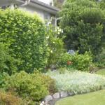 -absolutely_free_photos-original_photos-home-green-garden-4288x3216_94006